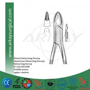 Dental extracting forcep american pattern